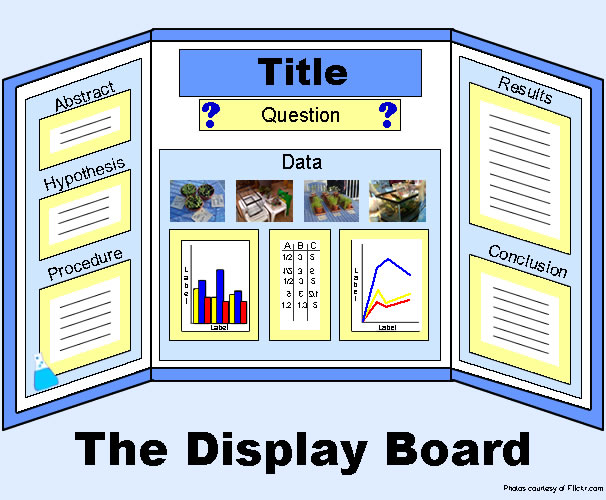 designing the display - Tri Fold Display Board Design Ideas