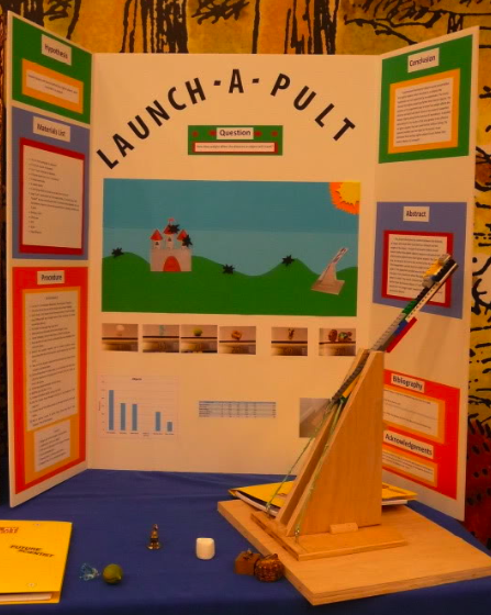 2011 winning science fair project photograph - Tri Fold Display Board Design Ideas