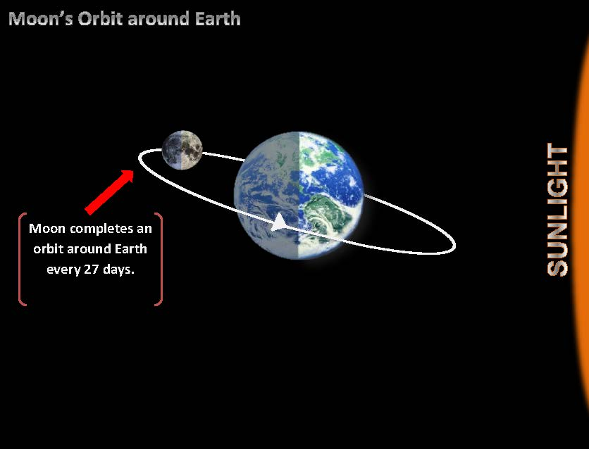 Let's review how the Moon moves around Earth. After taking a look at ...