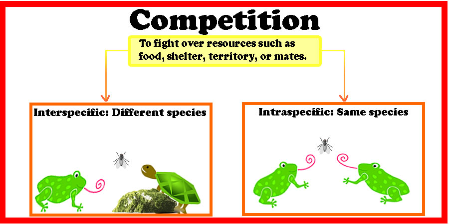 competition and mutualism I know that indirect commensalism and apparent competition are possible, but is  indirect mutualism possible is there a way for two organisms to benefit one.