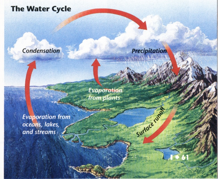 Simple Water Cycle Diagram With Explanation Water Cycle Diagram